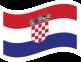 Flag131
